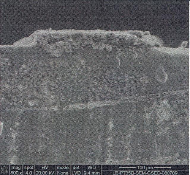 PT35B Profile
